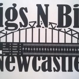 Rigs N Bits Newcastle Self Adhesive fish measure – Sea Fishing Fish Measure – Black